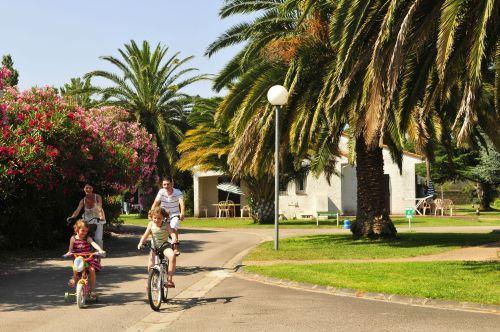 Rental Residence Le Domaine Du Mas Blanc sea