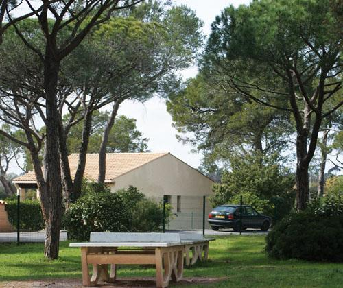 Le Domaine des Grands Pins - Saint-Raphael - Extérieur été